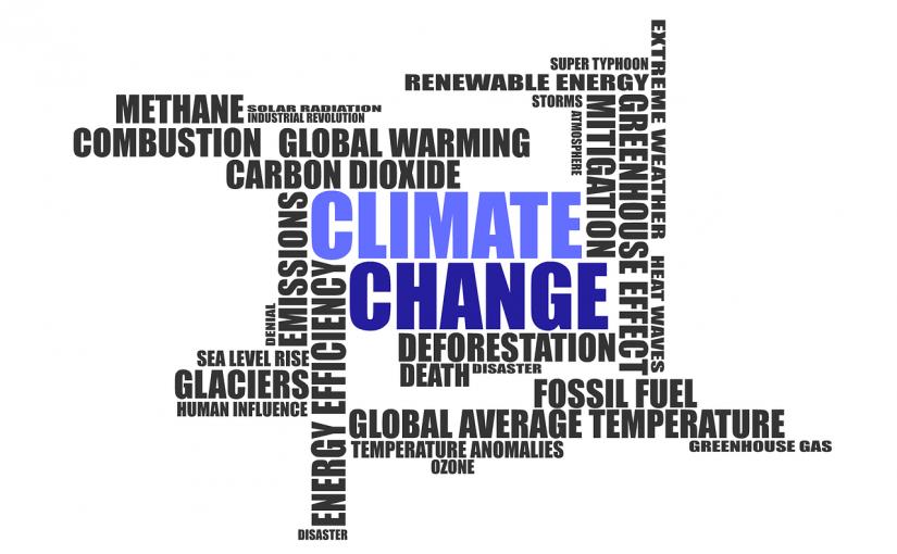 Unaufrichtige Kritik an Trumps Klimapolitik
