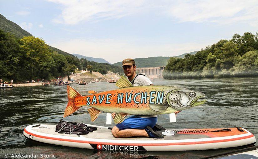 Flussjuwele in Gefahr – Protest auf der Drina